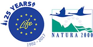 logo_25.fw-3.fw_r1
